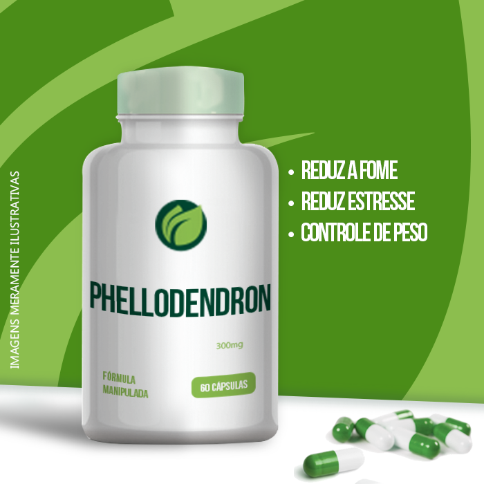 Phellodendron Extrato Seco - 300mg - 60 cps